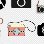 一键恢复数码相机丢失的照片