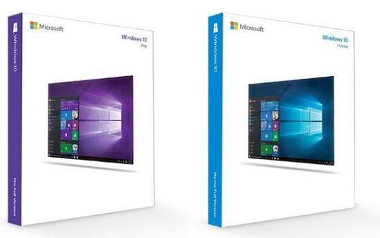 微软Win10 21H1